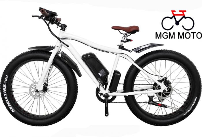 Beach Cruiser Fat Tire Big Power Mountain Electric Bike
